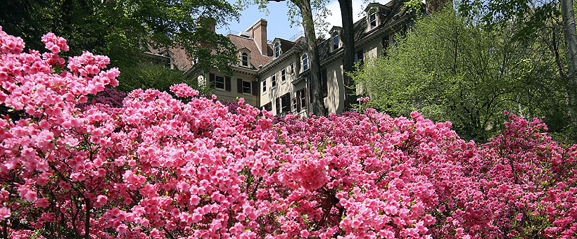 The Winterthur Garden and Museum